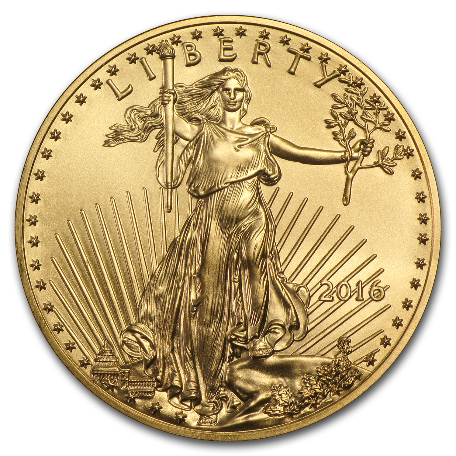 2016 1 oz Gold American Eagle (20-Coin MintDirect® Tube)