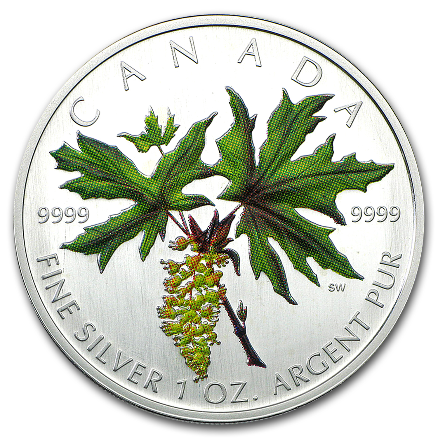 2005 Canada 1 oz Silver Maple Leaf Colored (Broadleaf Maple)