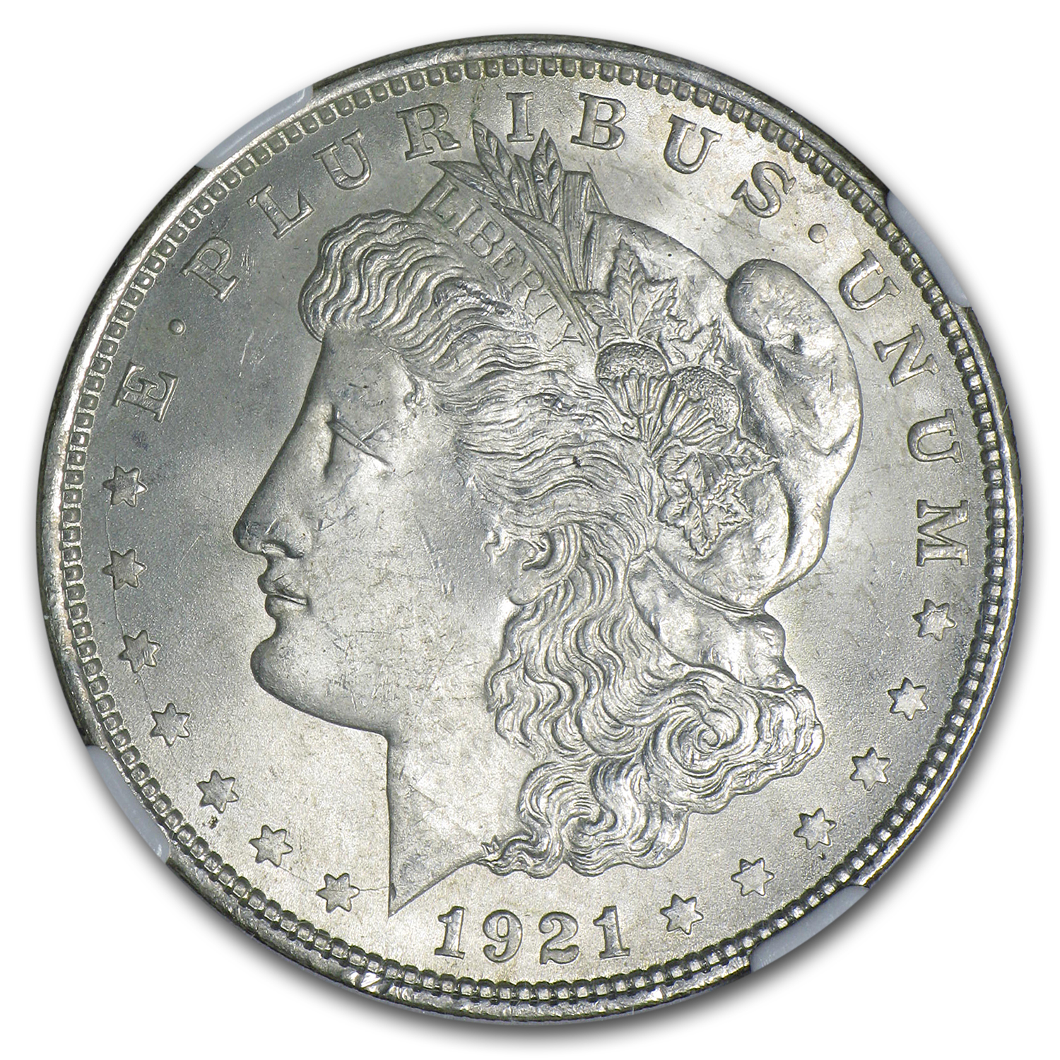 1921 Morgan Dollar MS-64 NGC (Toned, Obv &/or Rev)