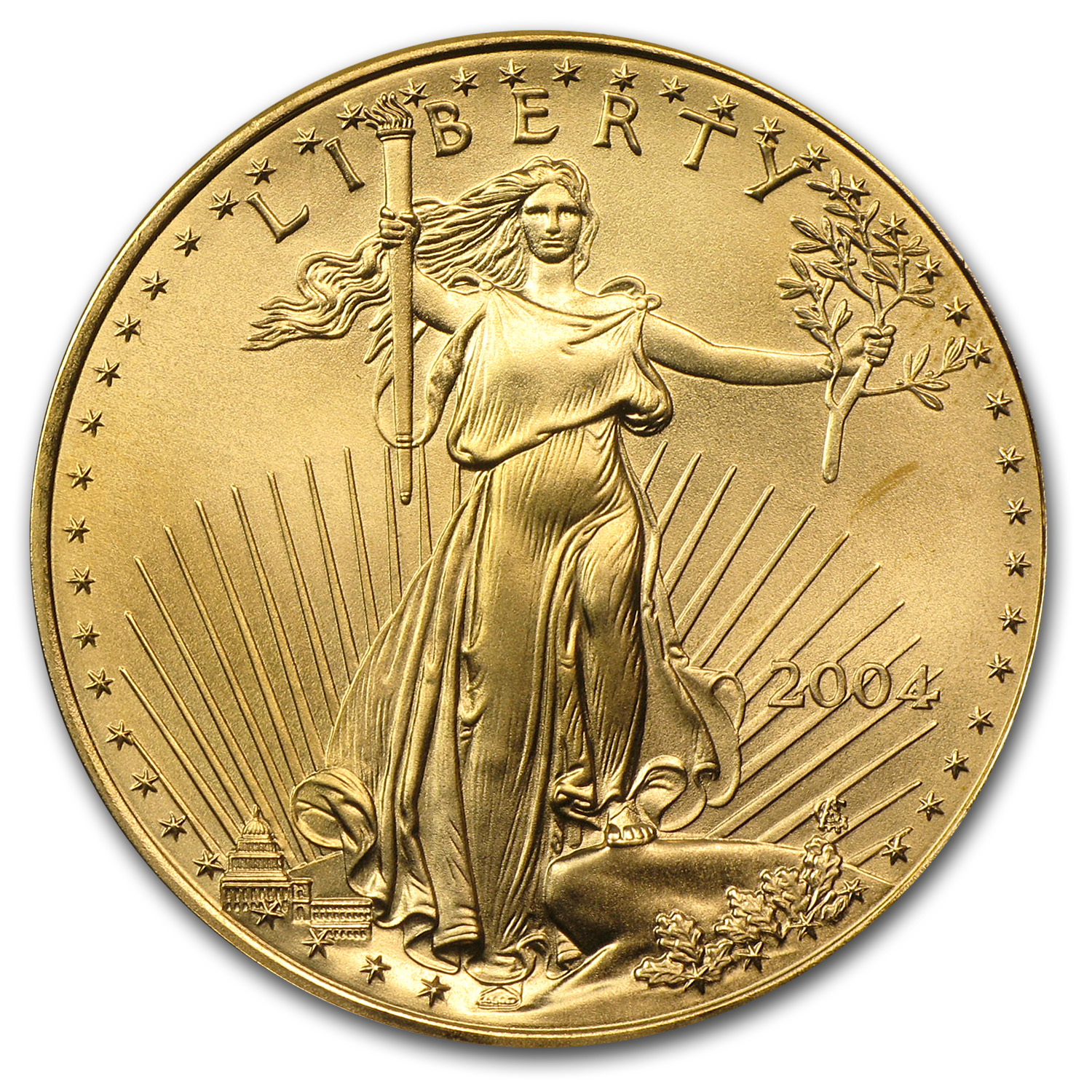 2004 1 oz Gold American Eagle BU
