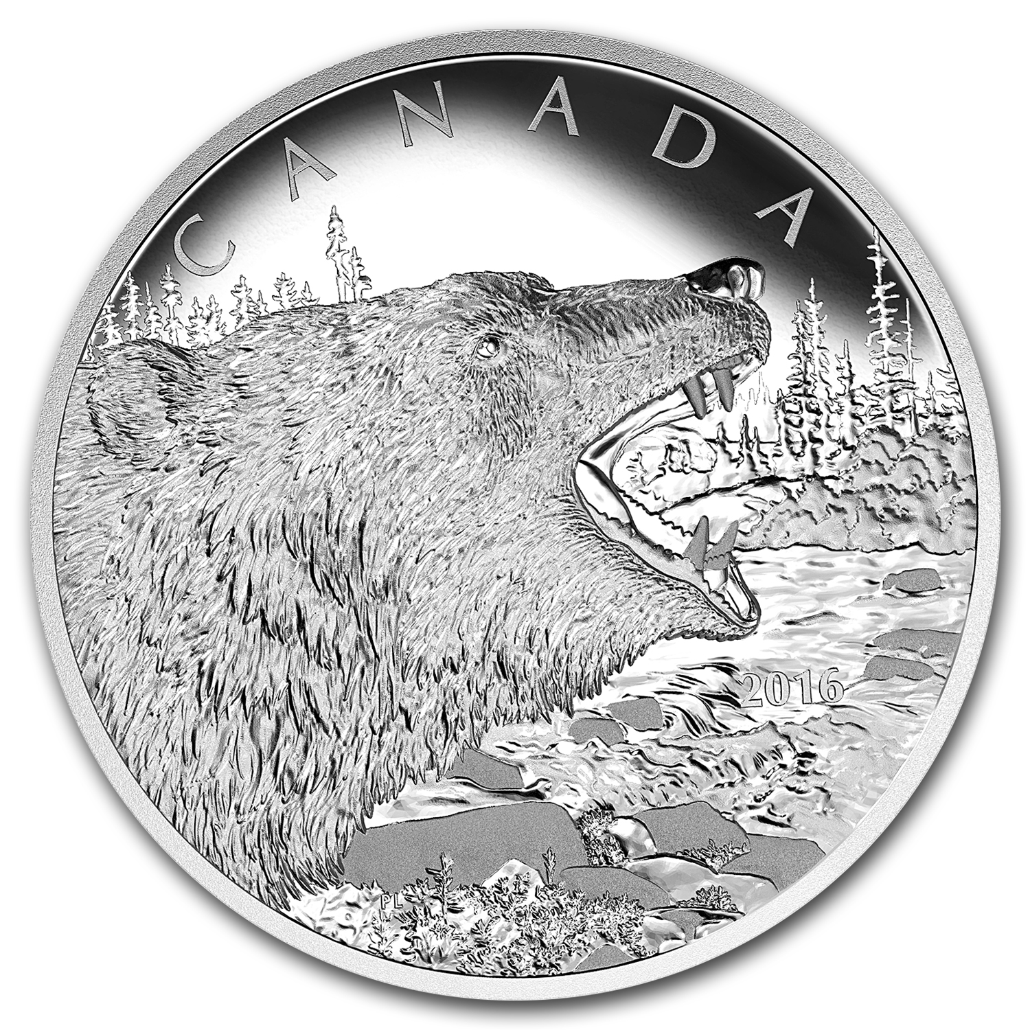 2016 Canada 1/2 kilo Proof Silver $125 Roaring Grizzly Bear