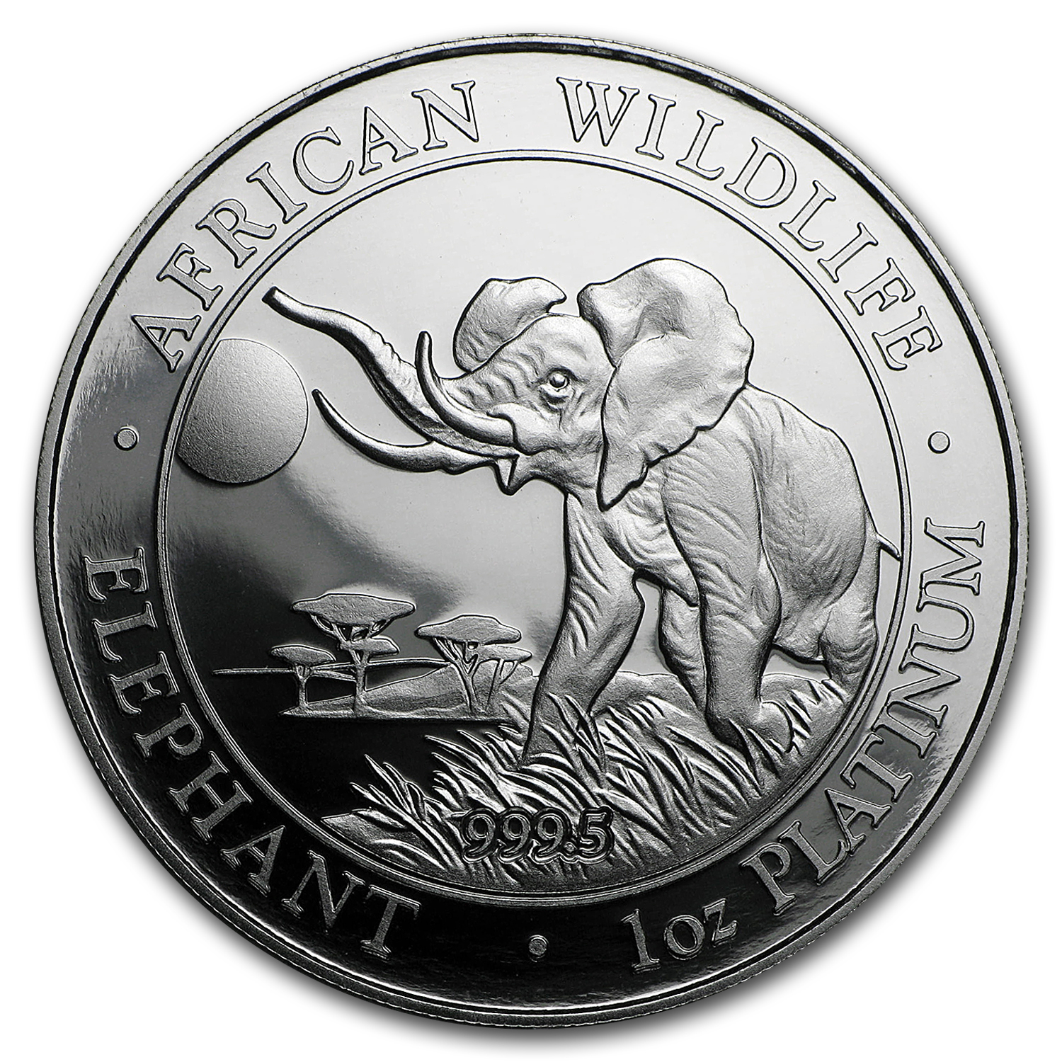 2016 Somalia 1 oz Platinum Elephant Proof