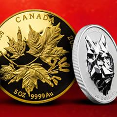 Rare Canadian Coins