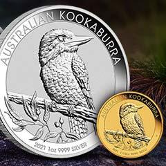 What is a Kookaburra?