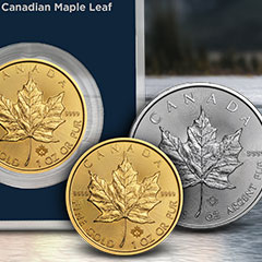 What is a Maple Leaf?