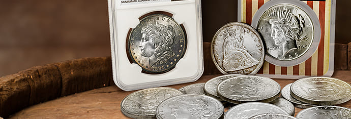 How Much is a Dollar Coin Worth?