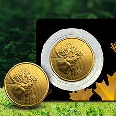 Capture Canada's Powerful Spirit with the 2019 Gold Moose