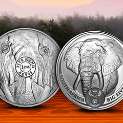 Innovate Your Collection with New South African Mint Releases