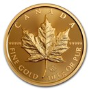 2020 Canada 10 Kilo .99999 Gold Big Gold Maple Leaf
