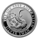 perth-mint-swans
