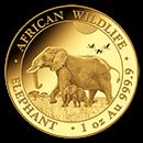 somalian-gold-elephant-coins