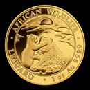 somalian-gold-leopard-series