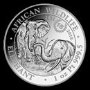 somalian-platinum-elephant-coins