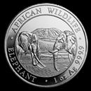 somalian-silver-elephant-leopard-coins