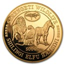 tanzania-gold-silver-coins-currency