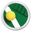 1 oz Silver Colorized Round - APMEX (Tennis)