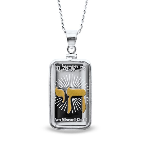 10 gram Silver - PAMP Israel Gilded Pendant (w/Chain)