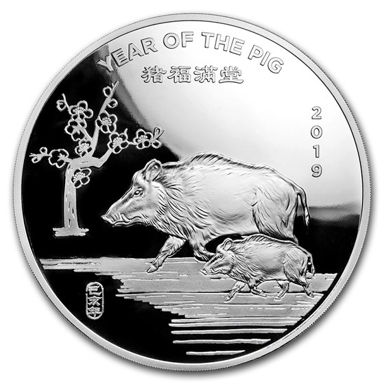 10 oz Silver Round - APMEX (2019 Year of the Pig)