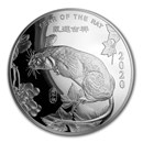 10 oz Silver Round - APMEX (2020 Year of the Rat)