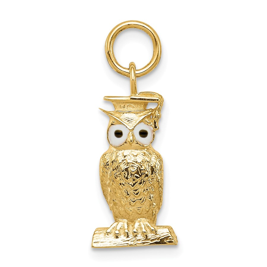 14k Gold Graduation Owl Charm with Enamel