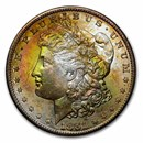 1878-1904 Morgan Dollars BU (Beautifully Toned)