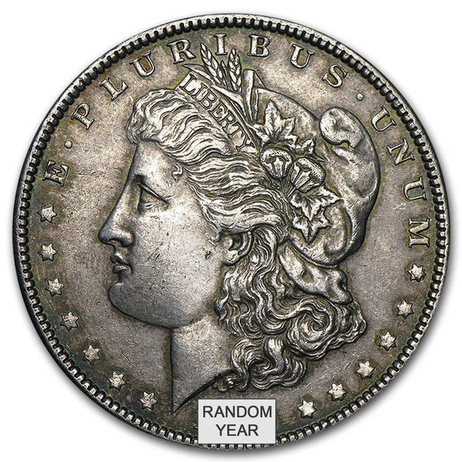 1878-1904 Morgan Silver Dollar XF (Random Year)
