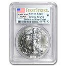 1986-Current Silver Eagle MS-70 NGC/PCGS (Random Year, Spotted)