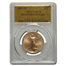 2006-W 1/2 oz Burnished Amer. Gold Eagle SP-70 PCGS (Gold Foil)