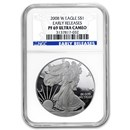 2008-W Proof American Silver Eagle PF-69 NGC (ER)