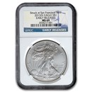 2013 (S) American Silver Eagle MS-69 NGC (Early Releases)
