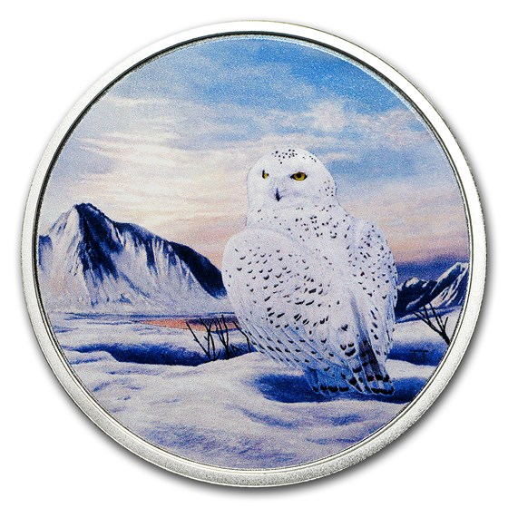 2018 RCM 2 oz Ag $30 Arctic Animals & Northern Lights Snowy Owl