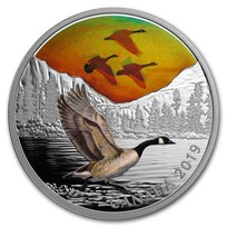 2019 Canada 2 oz Ag $30 Majestic Birds in Motion: Canada Geese