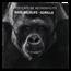 2019 Tanzania 2 oz Silver Rare Wildlife Proof (Western Gorilla)