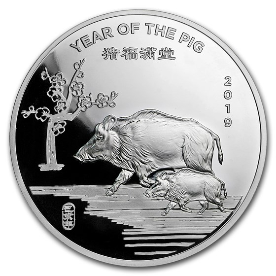 5 oz Silver Round - APMEX (2019 Year of the Pig)