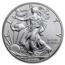 Burnished American Silver Eagle (w/Box & COA, Random Year)