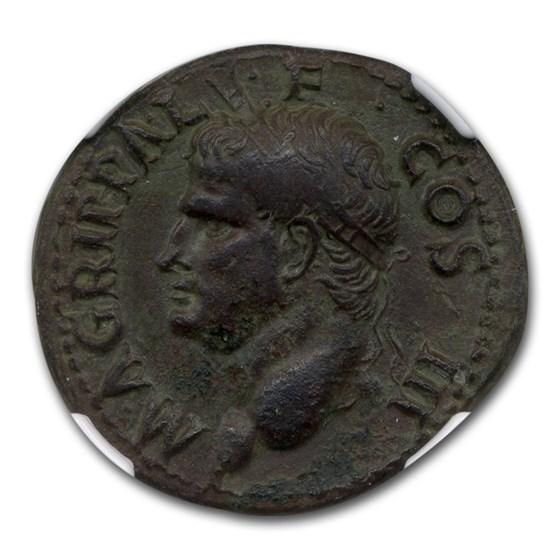 Roman Bronze As Agrippa Emperor Caligula (12 BC) Ch VF NGC