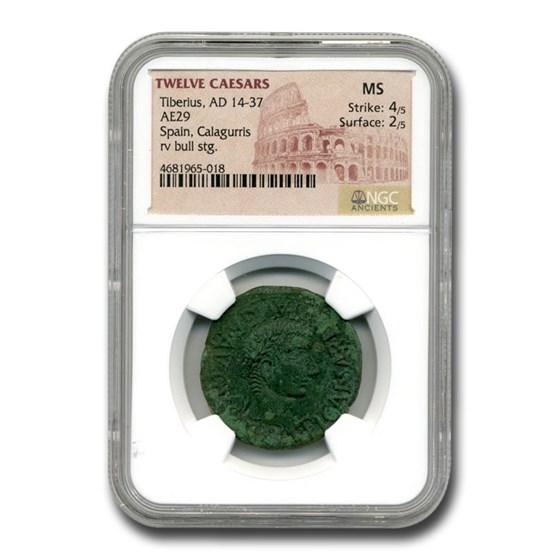 Roman Provencial AE 28 Emperor Tiberius (14-37 AD) MS NGC