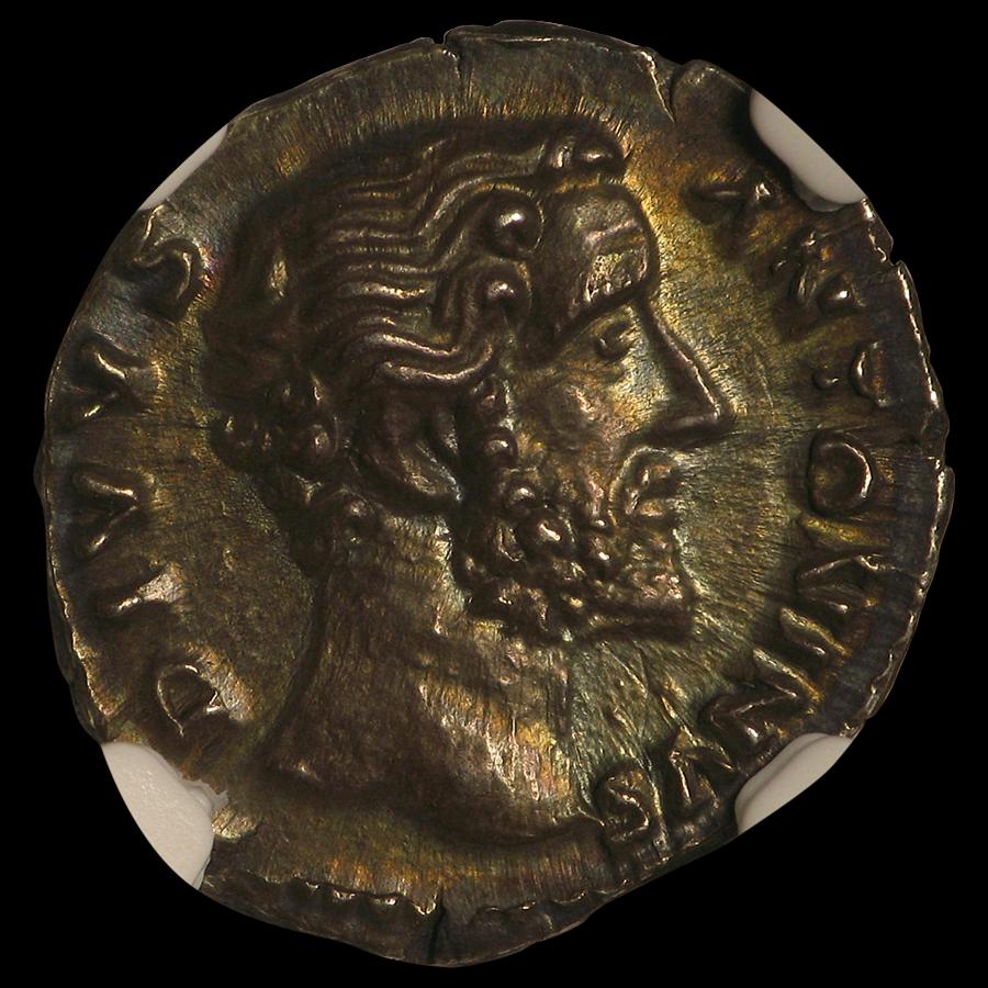 Rome Denarius Emp. Antoninus Pius 138-161 AD MS* NGC (Posthumous)